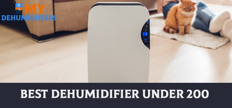 Best Dehumidifier under 200 – Reviews & Buying Guide in 2021