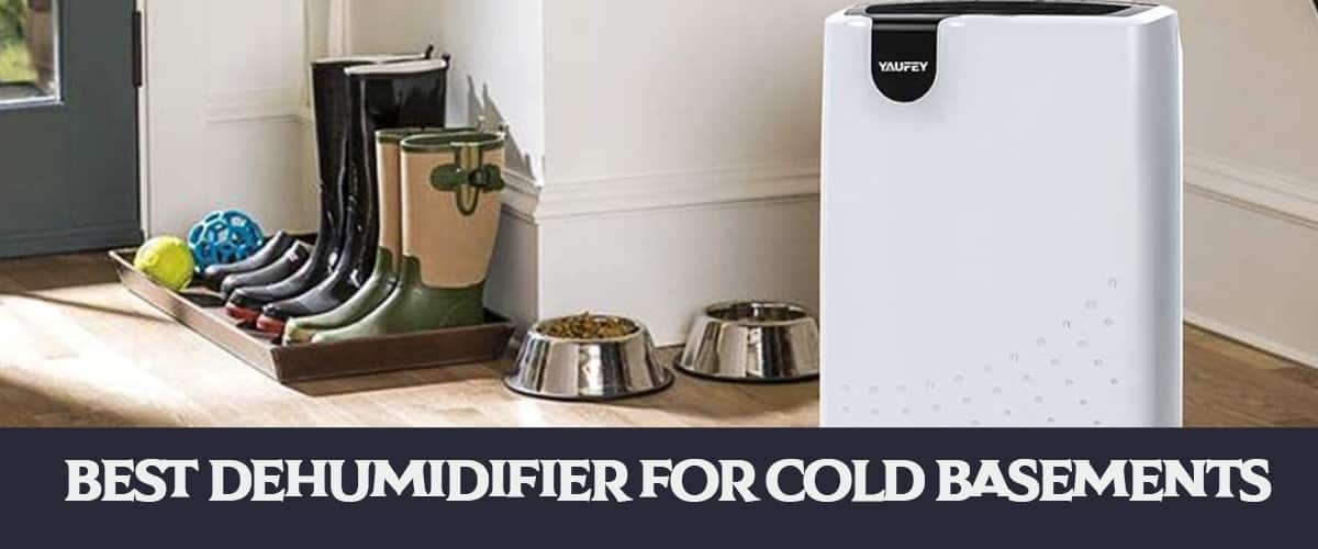 Best Dehumidifier for Cold Basements || For Winter