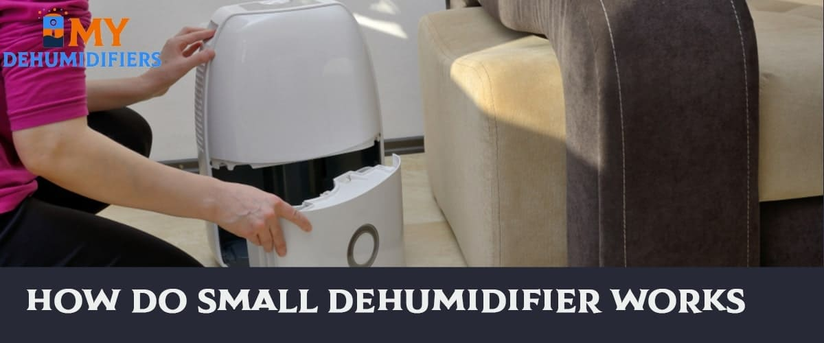 How Do Small Dehumidifier Works?
