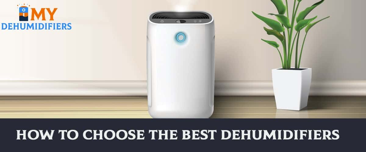 How To Choose The Best Dehumidifiers?