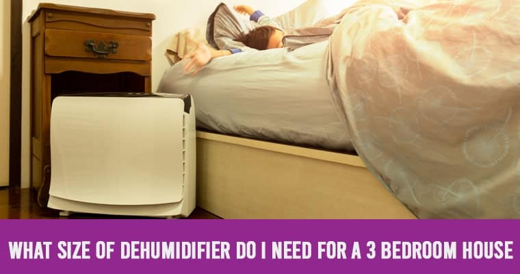 What Size Of Dehumidifier Do I Need For A 3 Bedroom House