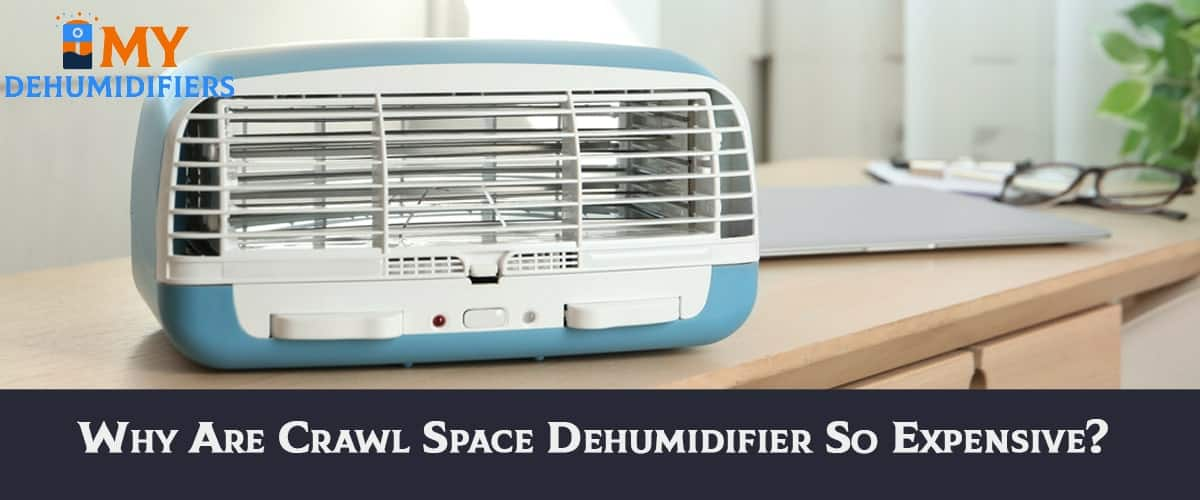 Why are crawl space dehumidifier So expensive?