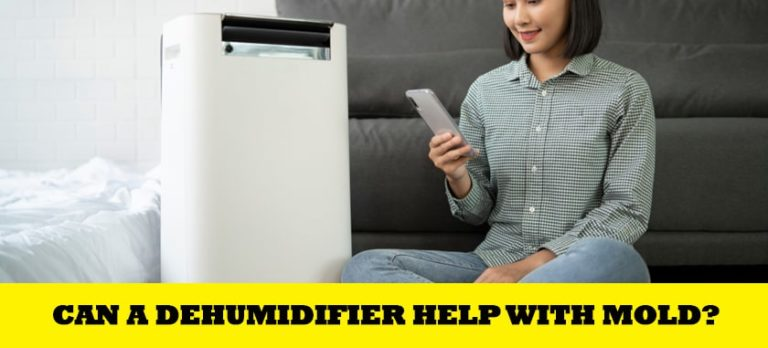 Can A Dehumidifier Help With Mold