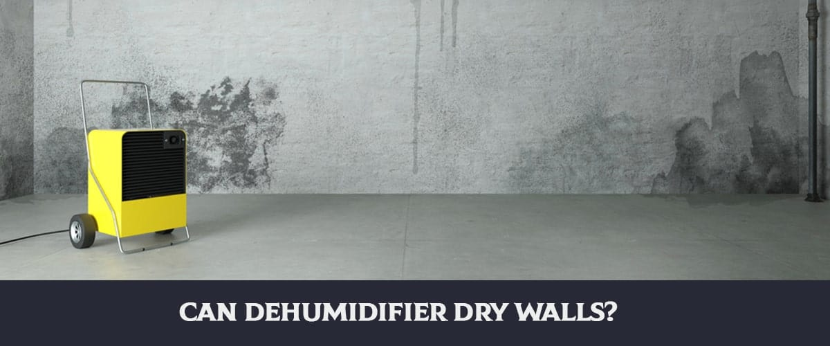 Can Dehumidifier Dry Walls?