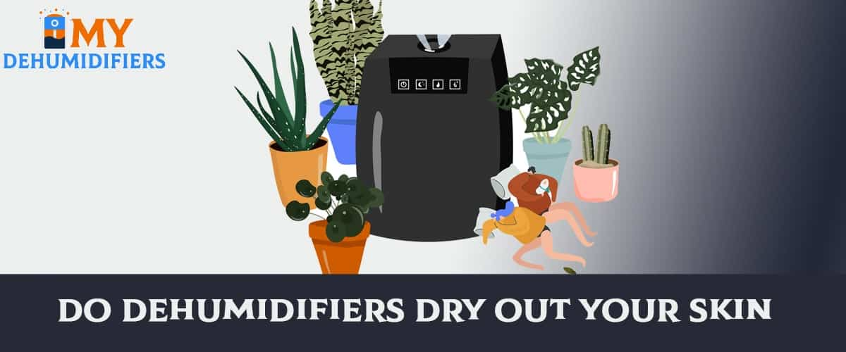 Do Dehumidifiers Dry Out Your Skin?