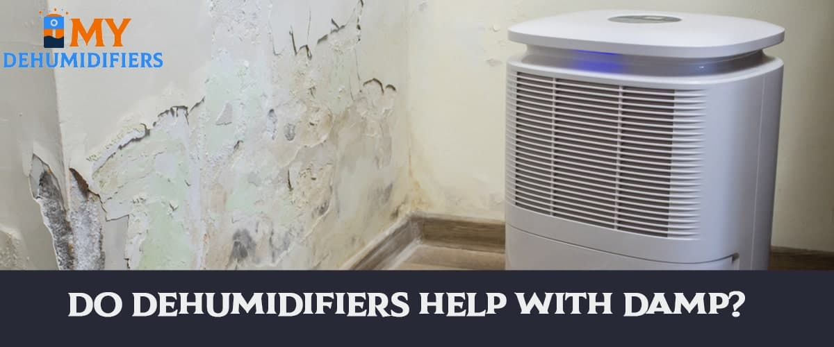 Do Dehumidifiers Help With Damp?