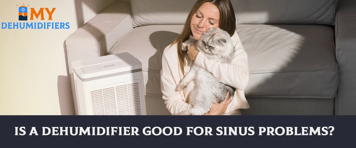 Is A Dehumidifier Good For Sinus Problems?
