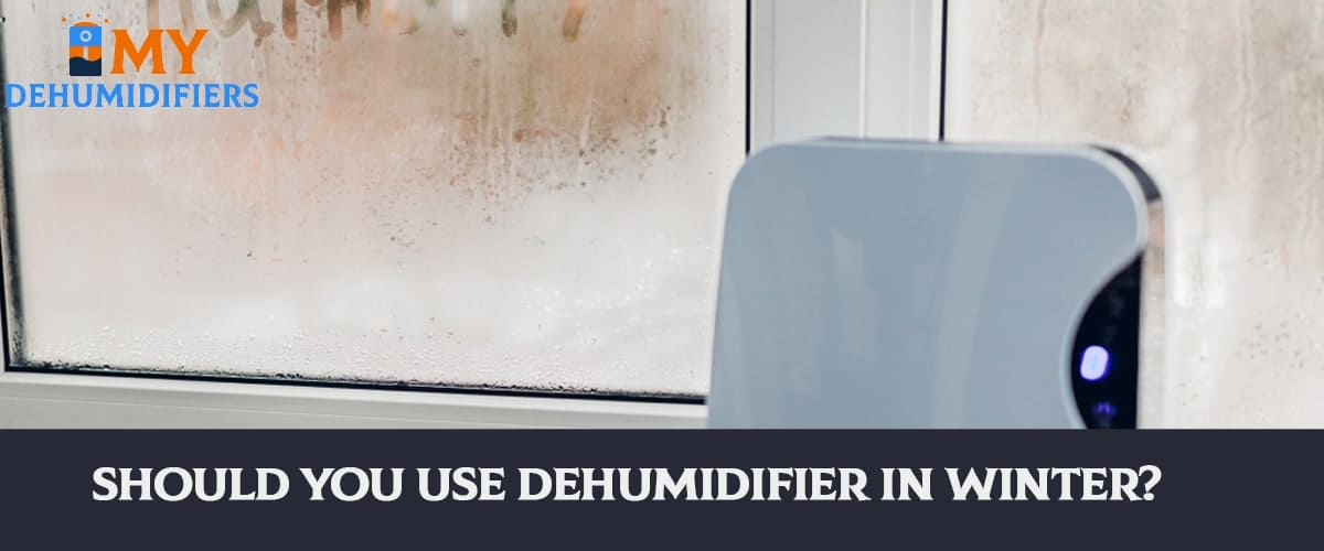 Should You Use Dehumidifier In Winter?