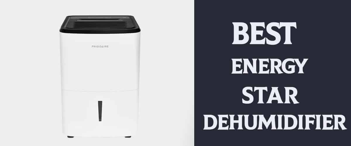 Best Energy Star Dehumidifier Review in 2021