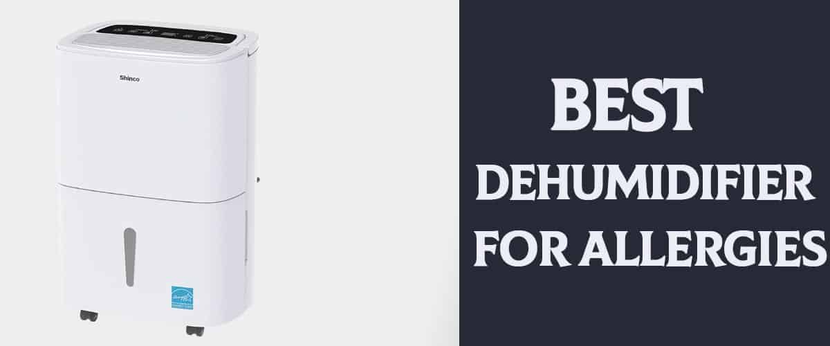 Best Dehumidifier for Allergies Review and Buying Guide
