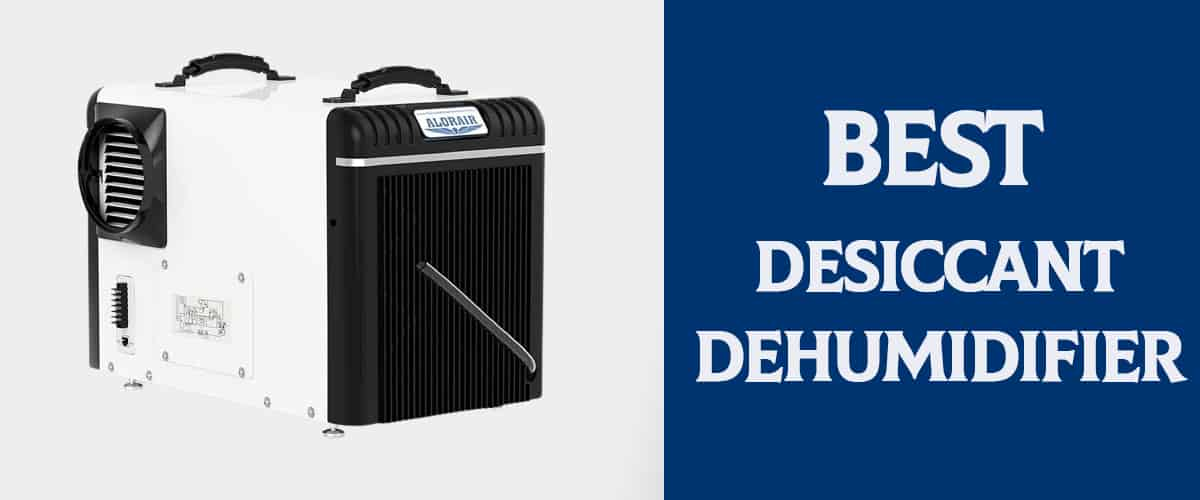 Best Desiccant Dehumidifier For 2021 -Review