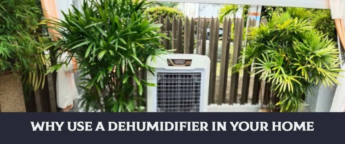 Why Use A Dehumidifier In Your Home?