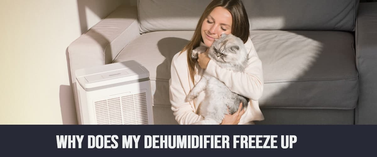 Why Does My Dehumidifier Freeze Up?
